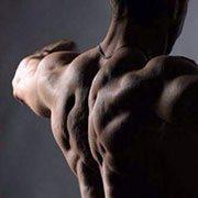 Lukas Wolf Fitnesstrainer & Ernährungsberater